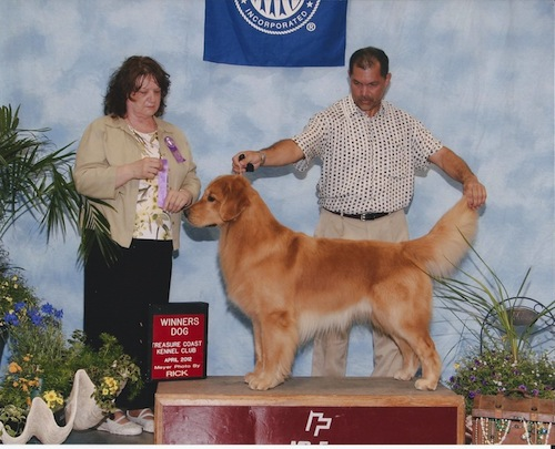 Joe at Treasure Coast Kennel Club