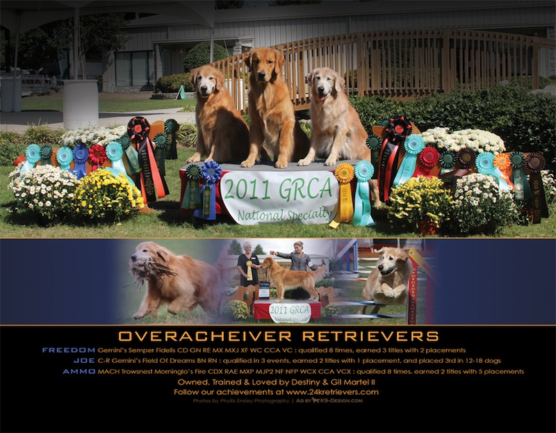 2011 Golden Retriever Nationals